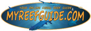 Online Coral Reef Guide