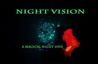 – Nightvision –
