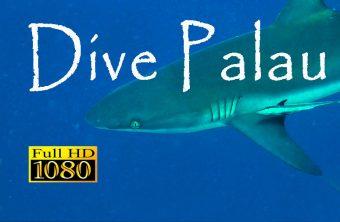 – Palau Unterwasser Film –